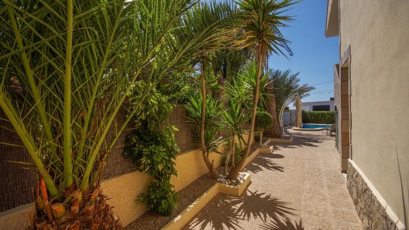 Detached Villa in El Toro - Port Adriano - Garden