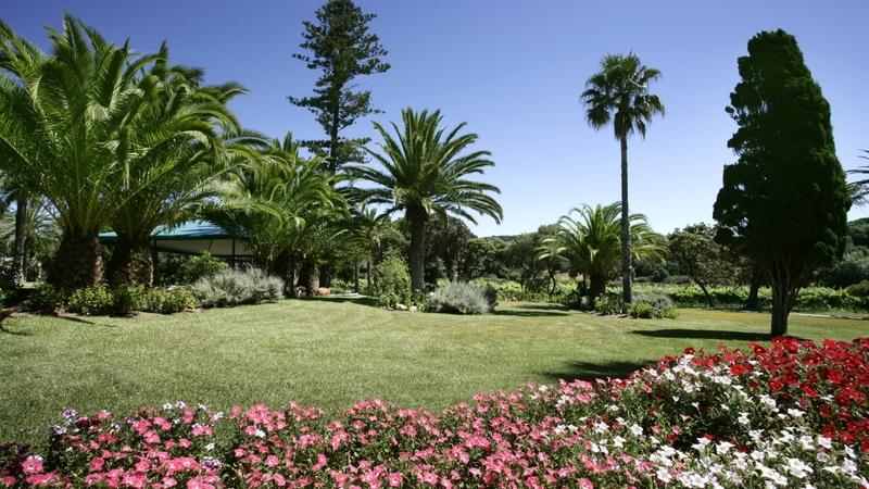 Hotel in Menorca - Garden