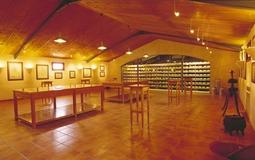 Hotel in Menorca - Museo