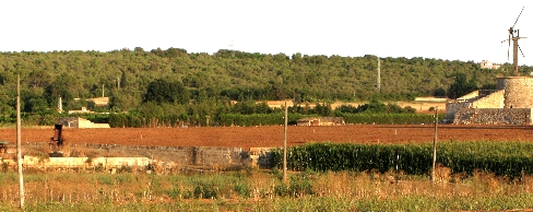 Plot in Muro - Plot for sale