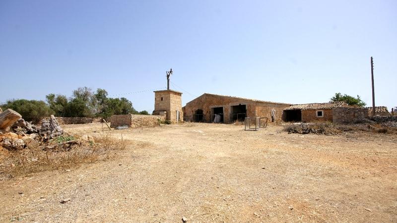 Finca in Palma de Mallorca - Animal stables