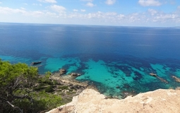 Plot in Sa Torre - P-Torre-100_1_Sea views