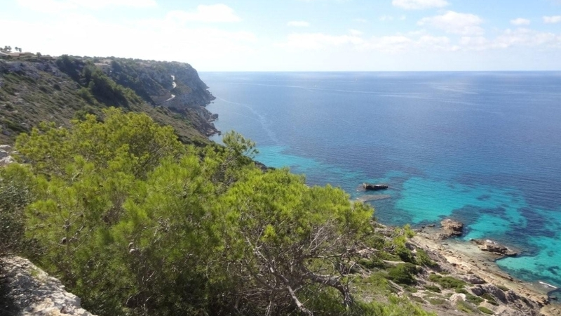 Plot in Sa Torre - P-Torre-100_2_Sea views