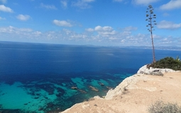 Plot in Sa Torre - P-Torre-100_4_Sea views