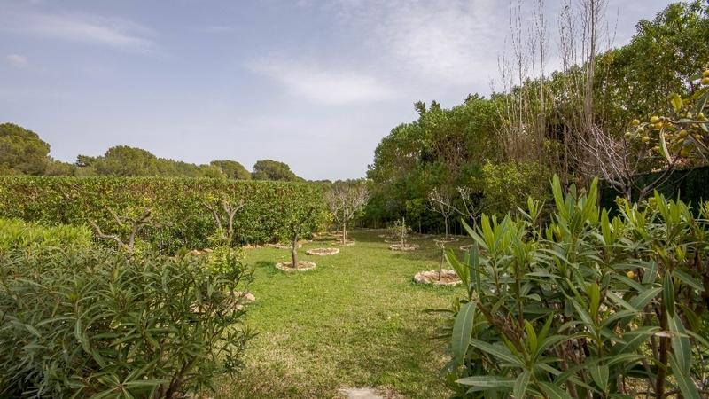 Villa in Nova Santa Ponsa - Garden
